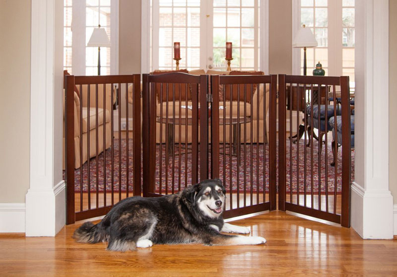 Finding The Best Configurable Pet Gate